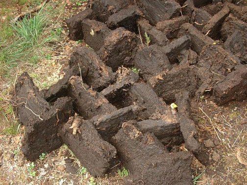 Wikipediaから泥炭の写真を引っぱってきました。マコモ層が繊維っぽく堆肥のように見た目とそっくりです。