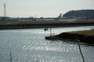 シジミ漁の船が出て行きます