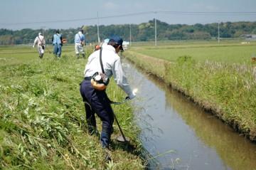 開水路法面の除草のようす クリックで拡大します