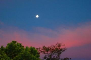 ↑ クリックで拡大します 7/29日早朝、南西の方向にはまだ月が出ています