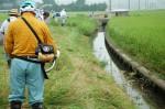 ↑クリックで拡大します 開水路の草刈りです