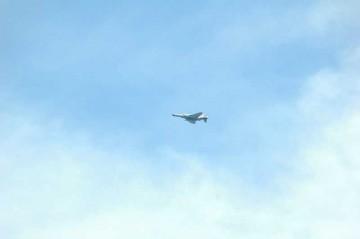 ちょっと遠いですが、F-4EJです。