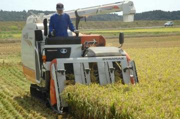 コンバイン点検整備も終わり、今年初めての稲刈りです。まずはチヨニシキ、あきたこまちの稲刈りをしました。