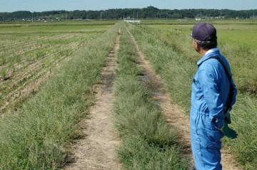農道も取り立てて問題なしです。