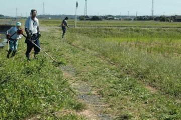 農地側、農道、水路側と一体で草刈りをして行きます。