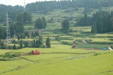 信濃川を渡り、十日町を過ぎてさらに山の中に入っていきます。どこまでもついてくる棚田の風景。うーん・・・やはり米は日本人の主食なのだなあ、と、感じます