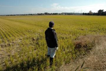 合わせて農用地全体的に点検します