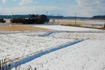 道路にはすっかり雪がなくなって、田んぼや畑に残るのみとなりました。