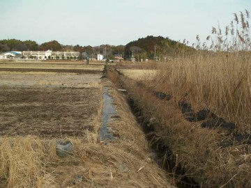 実際の周りの田んぼは畔を作り直したり、泥上げをしたり、メンテナンス中です。これは水路の泥上げをしているところ。