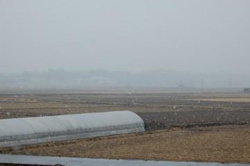早朝、うっすらと積もっていた雪が溶けてきたなあ・・・と、思ったらこれです。