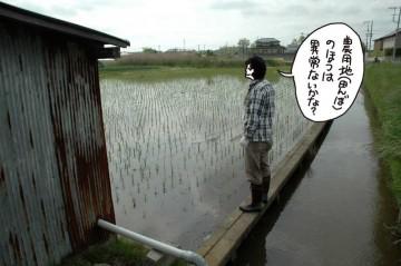 田んぼも点検します。