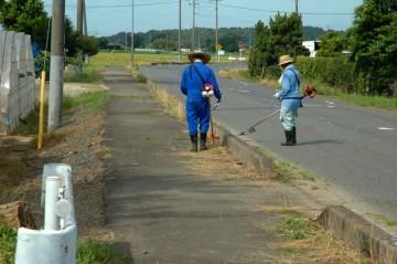 本来の農地水活動には含まれていませんが、市道だか県道だかわかりませんが、除草します。