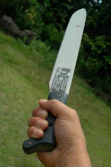中米ホンデュラスで買ったマチェテ(山刀)です。