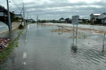 石川川 9月22日8時54分 もういっぱいいっぱい 道路から田んぼのほうへ勢いよく流れ出ています