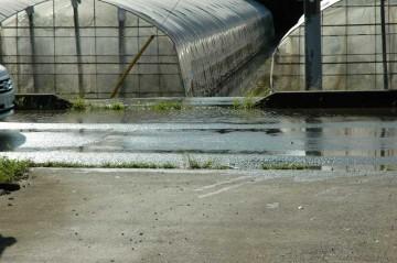 石川川 9月22日 同じく7時50分 島田町との境目 こちらは涸沼川から溢れた水 この後さらに水が増えました。
