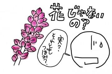 花じゃないって言うんですけど・・・