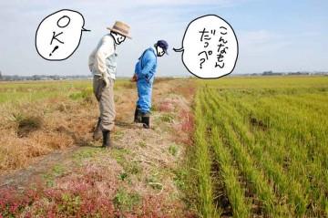 農地法面の点検