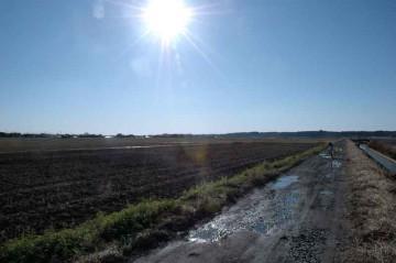 田んぼも起こされて茶色っぽくなっています。水路の水位も低くなって、色の少ない季節になりました。