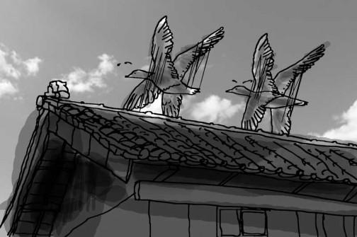 このように屋根の向こう、低いところを上がっていく時に「大きいなあ」そう思います。考えてみればこんなに低いところを飛ぶ、大きな鳥を間近で見るのはトンビ位ですかねえ。
