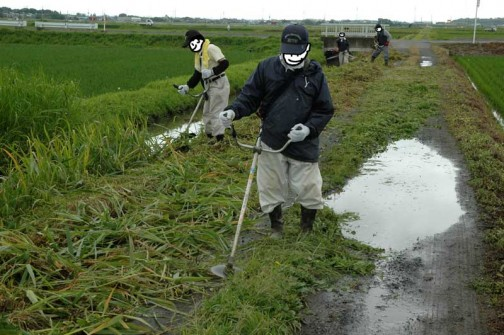 農地・水保全管理支払交付金 農道の草刈り