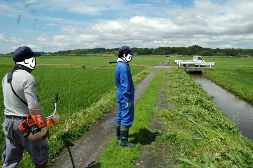 農地・水保全管理支払交付金 農道の点検