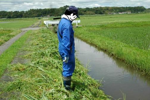 農地・水保全管理支払交付金 水路の点検
