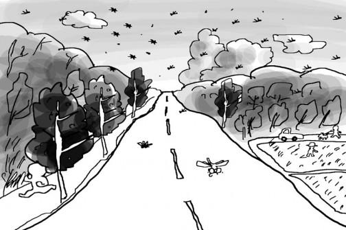 マラソン道路を走っていたらたくさんオニヤンマが飛んでいるのを見た。こっちは説明つかず。