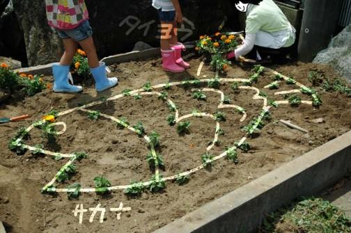 なんと花壇は子供たちの相談の結果、花壇は魚のカタチ。現在太陽を植え込み中。結局子供達の指示に従ってお母さんが植え込む事態に・・・