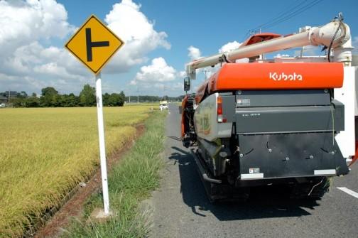 一枚の田んぼを刈り終わって次の田んぼへ向かいます。オレンジのコンバインと黄緑に実った稲、そしてまっ黄色とクロの標識。青空と黄色の標識のコントラストが大好きです。