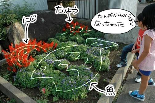花壇に植えた草花が大きくなってイメージが崩れた