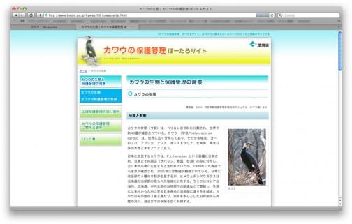 環境省「カワウの保護管理ぽーたるさいと」(http://www.biodic.go.jp/kawau/index.html)なるもの発見!