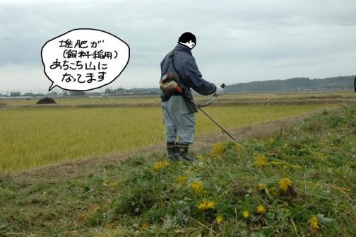 農道の草刈