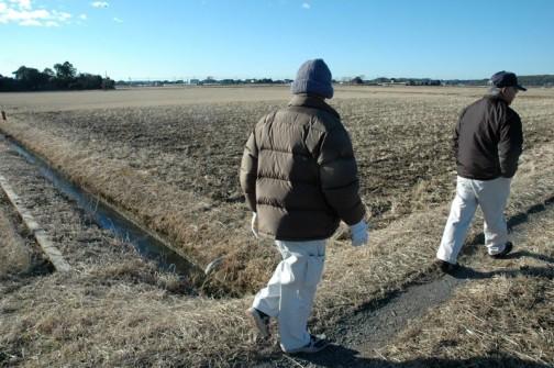 農道や水路を見ながら歩きます