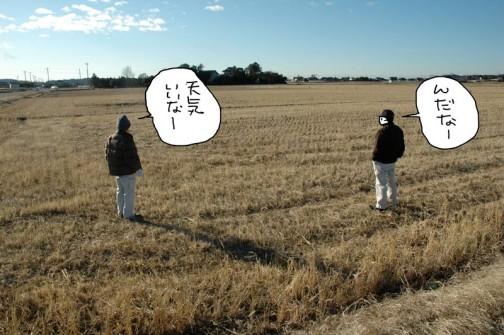 田んぼの中なども一応見て歩きます