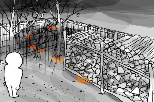 ブロック塀と薪棚の暗がりを背景に飛び回るジョウビタキはオレンジの閃光のようだ。初めは一体何が起ったのか????・・・と思いました。