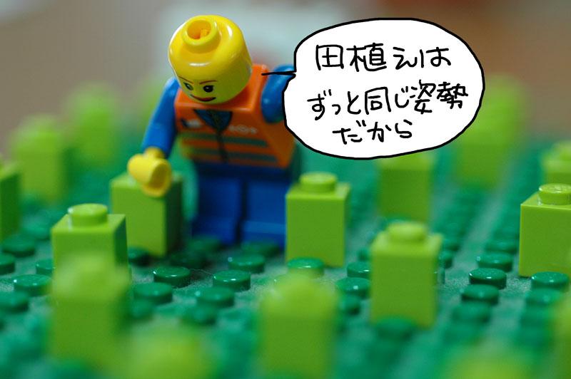 田植えレゴ