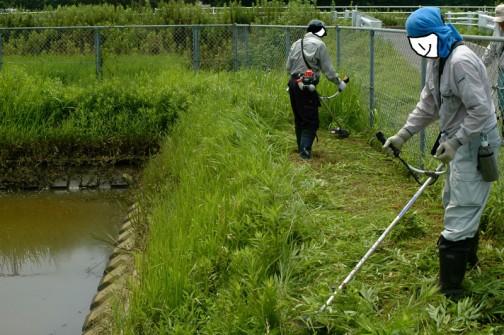 揚水機場まわりの草刈りもします