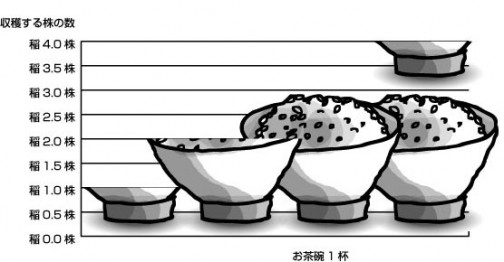 稲の株とお茶碗の関係グラフ