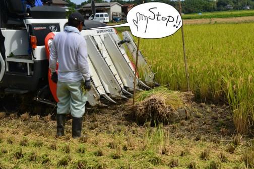 クボタコンバインER108での稲刈り