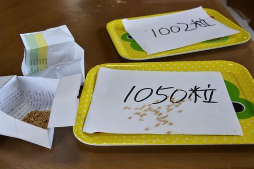 A4の紙を折った袋(4グラム)に籾を入れて計ってみました。
