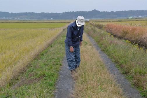 農道の点検 島地区農地・水・環境保全会