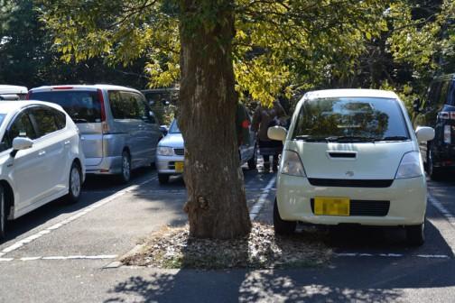 駐車場(無料)で狭小スペース発見! やはりそのスペースにぴったりの車が停まっています。こっちはいいけど、反対側は厳しそうだなあ・・・田舎育ちなもので、僕はこういうチョコマカした車の操作は苦手です。できることなら駐車スペースは、ドアを思い切り全開にしても、隣の車とぶつからない大きさだったら助かります。