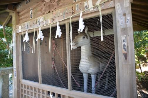 馬小屋に入っているので襲ってはきません。