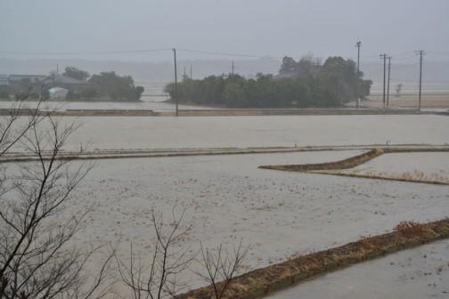 各地で大雪になったのは2/15日でしたっけ? その時の水戸市大場町の様子を・・・田んぼが水で繋がってしまって、屋敷森が水の中に浮かんでいる感じです。