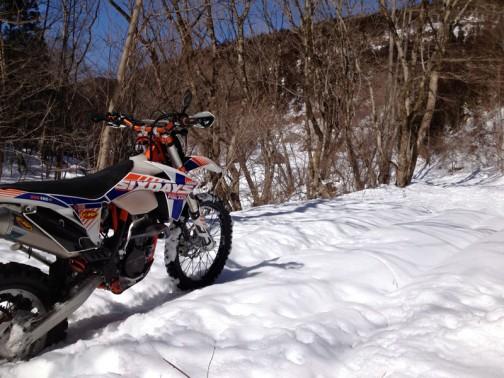 で、おとといは仕事をさぼって雪を探しにいきました。イメージでは延々と雪の上を走れる感じだったのですが、実際は林道に入って雪を見てから1キロも行けず(それも押し押し)・・・写真では浅そうに見えますが、40センチくらいあるんです。降った雪が固くなっているだけで、アクセルを開けると「ズボッ」と単車が雪を踏み抜いて上を向いてしまいます。雪が深すぎてスノーフリークの四駆も入っていません。せっかくのバージンスノーなのになあ・・・