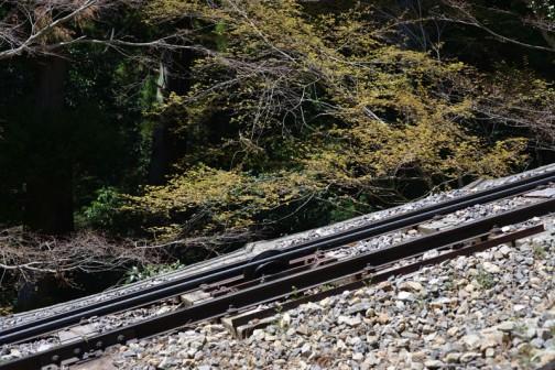 Funicular of the Mt.Tsukuba 筑波山ケーブルカーは交走式(つるべ式)だな・・・たぶん。 茨城県の代表的な山、筑波山のなかで最も代表的な登山道の御幸ケ原コースその1。約2kmで登り約90分、下り約70分だそうです。