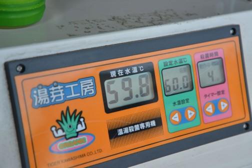 使う農薬を減らすことができるらしい、コシヒカリと飼料稲/種籾の「温湯消毒」2014
