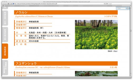 茨城県版レッドデータブックでも、準絶滅危惧種に指定されていますね!