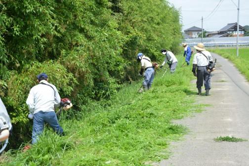 水路の草刈り