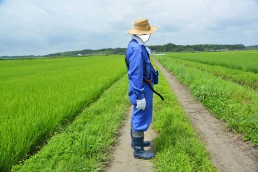 ついでですから農道のチェック(もう、どこに砂利を入れるなどということは決まっていますが・・・)